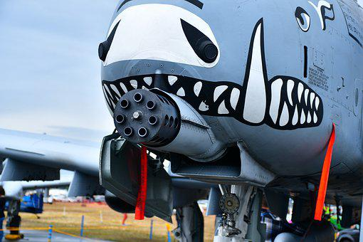 Warthog Plane Gun, Gatling Gun, Warplane