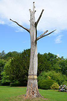 Denmark, Augustenborg, Sculpture Trail, Tree, Carving