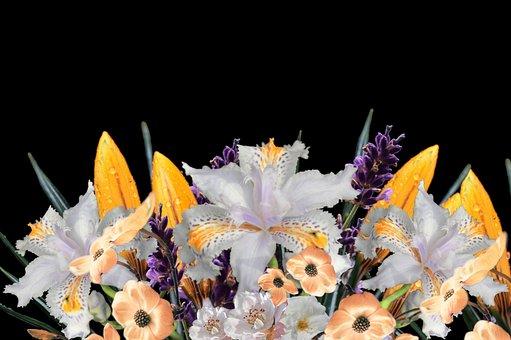 Arrangement, Bouquet, Flowers, Nature, Beauty, Flora