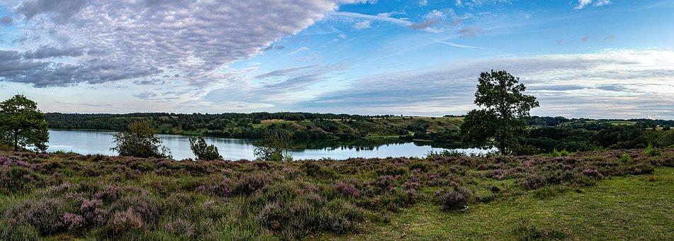 Heather, Lake, Hald Lake, Dollerup, Natural, Hills