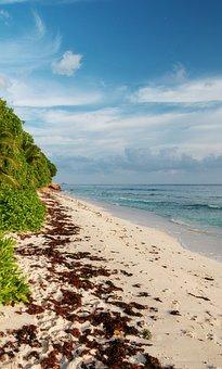 Seychelles, La Digue, Holiday, An Island, Travel