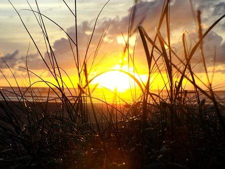 Sunrise, Sunset, Nature, Landscape, Sky, Dawn, Water