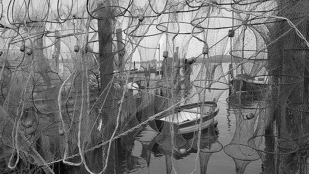Web, Fishing Boat, Fishing, Sea, Fisherman, Boat