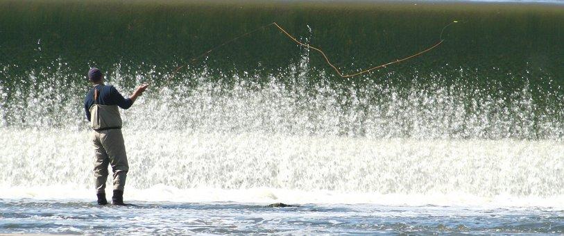 Fishing, Fly, Waterfall, Fish, Fisherman, Nature, Reel