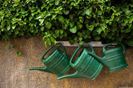 Watering Can, Garden, Casting, Green, Green Thumb
