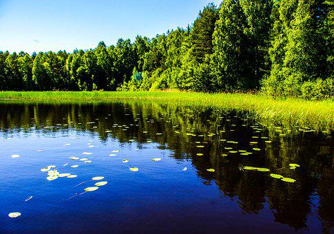 Lake, Water, Nature, Blue, Reflection, Summer
