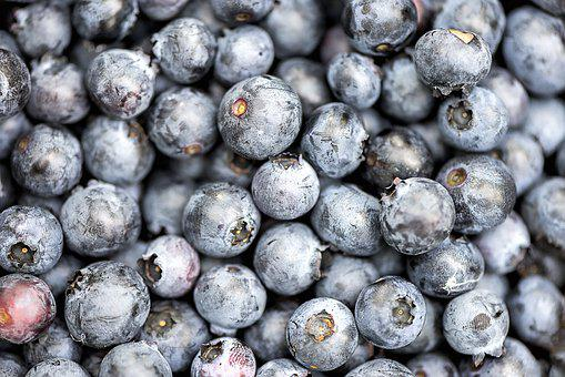 Blueberry, Fruit, Delicious, Food, Sweet, Dessert
