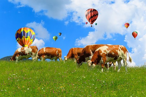 Landscape, Nature, Travel, Vacations, Alm, Balloon