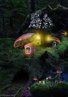Forest, Village, Inhabited, Mushrooms, Night