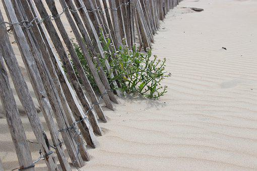 Fence, Sand, Beach, Dunes, North Sea