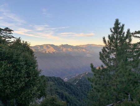 Mountain, Distance, Trees, Landscape, Scenic