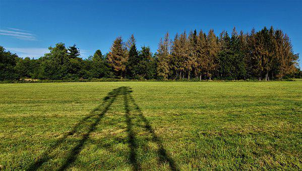 Shadow, Strommast, Sky, Trees, Blue, Brown, Field
