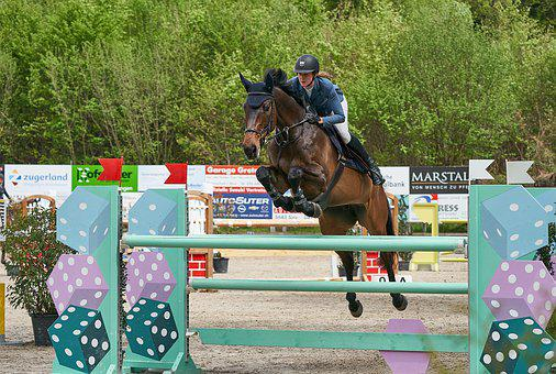 Horse Jumping, Competition, Obstacle, Jump, Sport, Show