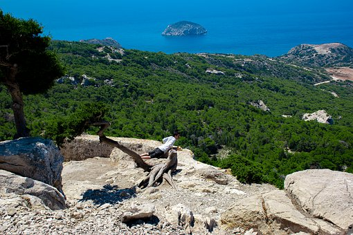 Curiosity, Rocks, Nature, Curious, Island, View