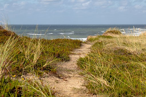 Sylt, Sea, Island, North Sea, Beach, Water, Nature