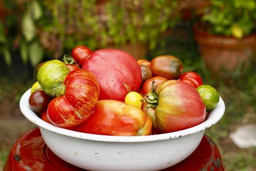 Tomatoes, Summer, Garden, Vegetables, Cook, Kitchen