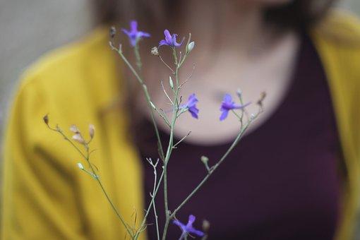 Flowers, Flower, Macro, Nature, Bloom, Summer, Purple