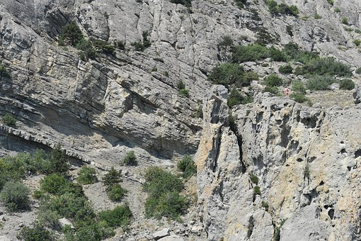 Rock, Trees, Background, Mountain, Landscape, Nature