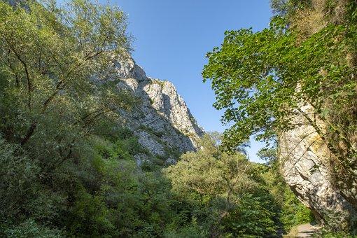 Rumania, Transylvania, Turda To Rift, Tourism, Nature