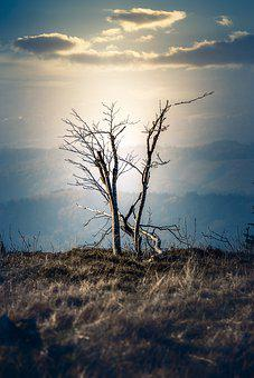 Black Forest, Northern Black Forest, Germany