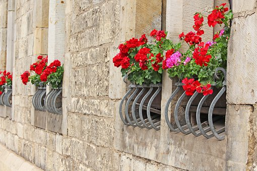 Facade, House Facade, Window, Flower Boxes, Building