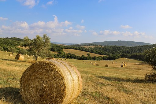 Tags Tuscany, Italy, Landscape, Faithful, Sun, Mountain