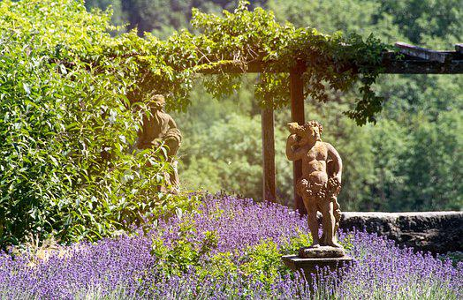 Garden, Sculpture, Lavender, Blooms, The Sun, Summer