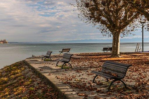 Lake Constance, Bank, Water, Lake, Mood
