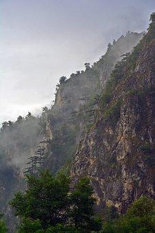 Rock, Trees, Landscape, Forest, Mountains, Cloud