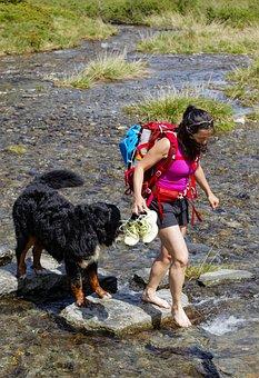 Trek, River, Trekking, Nature, Adventure, Summer, Water