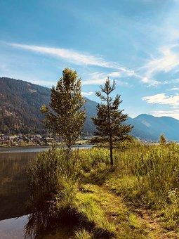 Lake, Vacations, Trees, Bank, Water, Nature, Sky