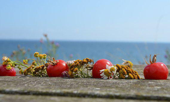 Tomatoes, Flowers, Wood, Table, Deco, Decoration