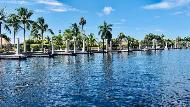 Everglades, Florida, Swamp, Nature, Water, Landscape
