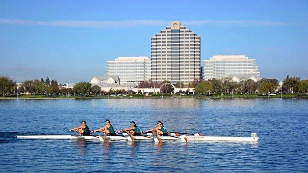 Rowing, Foster City, San Francisco, Quad, Lake, Sports