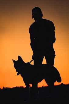 Silhouette, Dog, Sunset Man With His Dog