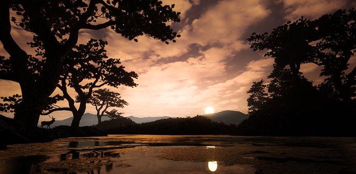 Deer, Lake, Sunset, Landscape, Water, Nature, Summer