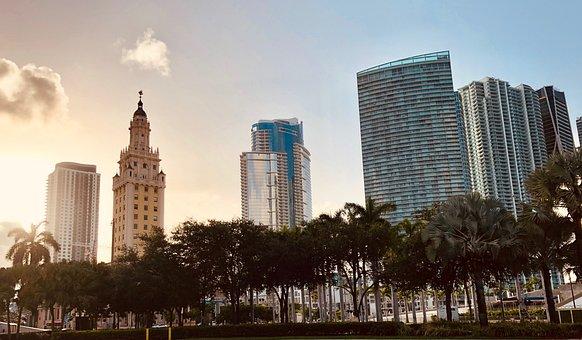 Miami, Florida, Usa, Skyline, Downtown, Sun, Palm