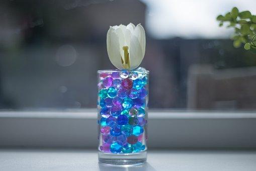 Tulip, Pebbles, Glass, White, Green, Flower, Bloom