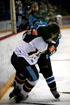 Hockey, Fight, Ice Rink, Hockey Rink, Competitive