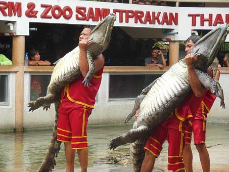 The Crocodile Farm, Crocodile Farm, Samut Prakan