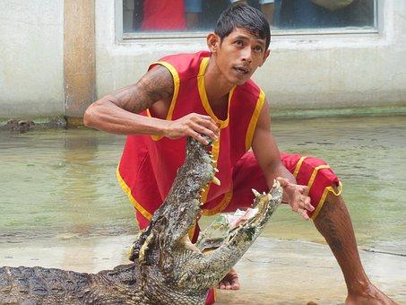 Crocodile Farm, Samut Prakan, Thailand, Show