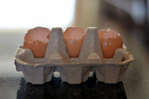 Egg Containers, Empty Containers, Eggs
