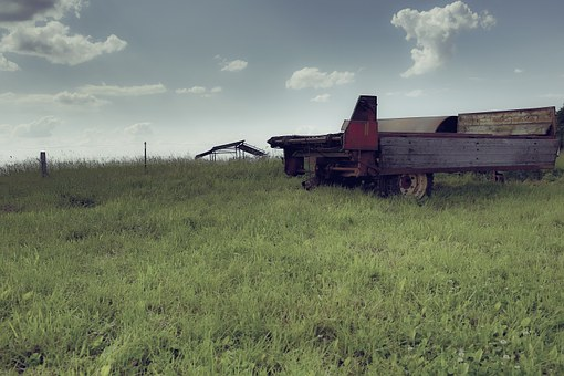 Agriculture, Pasture, Meadow, Trailers, Decay, Nature