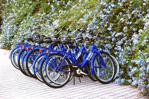 Wheels, Bicycles, Blue, Bicycle Stand, Bicycle Rental