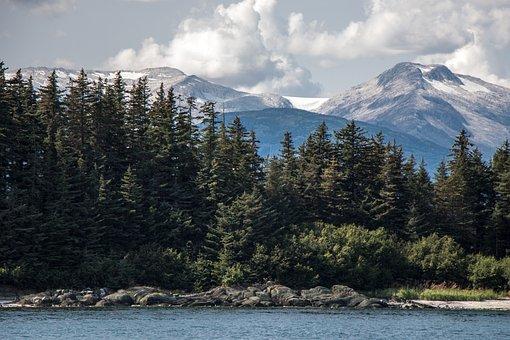 Alaska, Glacier, Sea, Ocean, Trees, Rocks, Scenic, Ice