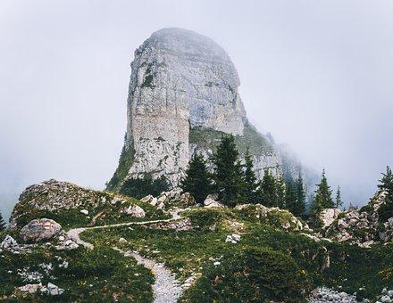 Schynige Platte, Daube, Hiking, Alpine, Switzerland