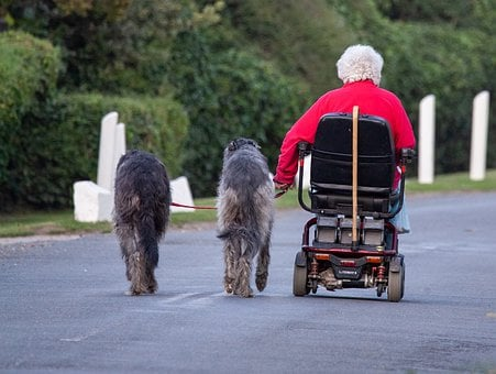 Dog Walking, Old Lady And Wolf Hound, Wolfhound