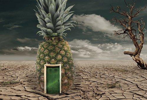 Pineapple, Desert, Sponge Bob, Collage