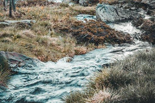 River, Painting, Oil, Mountain Stream, Alpine, Artfully