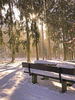 Snow, Thaw, Melt, Spring, Snow Melt, Landscape, White